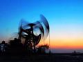 陽明海運:低硫燃油附加費將成明年集運業獲利關鍵(附圖)