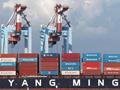 陽明海運上海成立合資公司專攻大陸市場